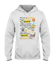 You Are My Sunshine My Only Sunshine Cat Hooded Sweatshirt thumbnail
