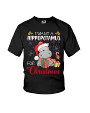 I Want A Hippopotamus For Christmas Xmas Hippo For Youth T-Shirt thumbnail