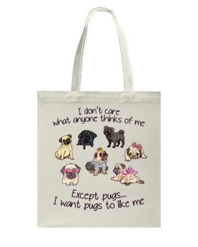 I want pug to like me