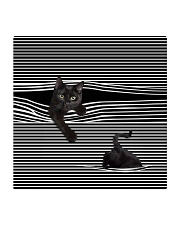 Love Cats Square Coaster thumbnail