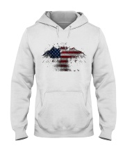 USA Independence Day USA Flag Eagle Patriot Hooded Sweatshirt thumbnail