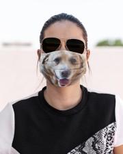 Big Face Labrador Retriever Cloth Face Mask - 3 Pack aos-face-mask-lifestyle-02