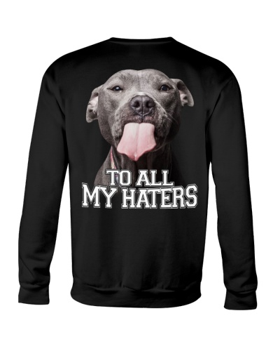 Limited Edition - To All My Haters