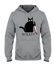 Limited Edition - What Hooded Sweatshirt thumbnail