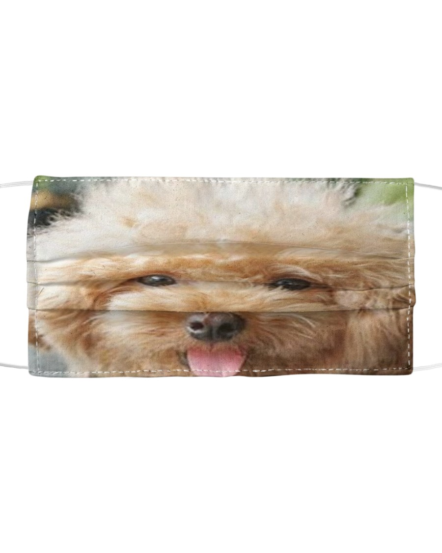 Big Face Poodle Cloth face mask