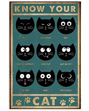 Cat Expression 11x17 Poster front