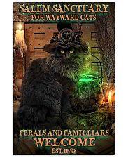 Salem sanctuary for wayward cats Halloween 11x17 Poster front