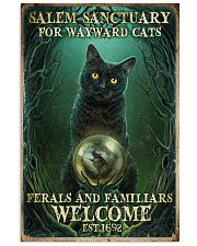 Salem sanctuary for wayward cats 11x17 Poster front
