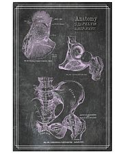 anatomy black board 8 11x17 Poster front