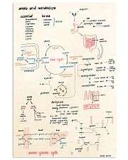 amino acid doodle 11x17 Poster front