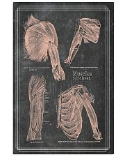 anatomy black board 4 11x17 Poster front