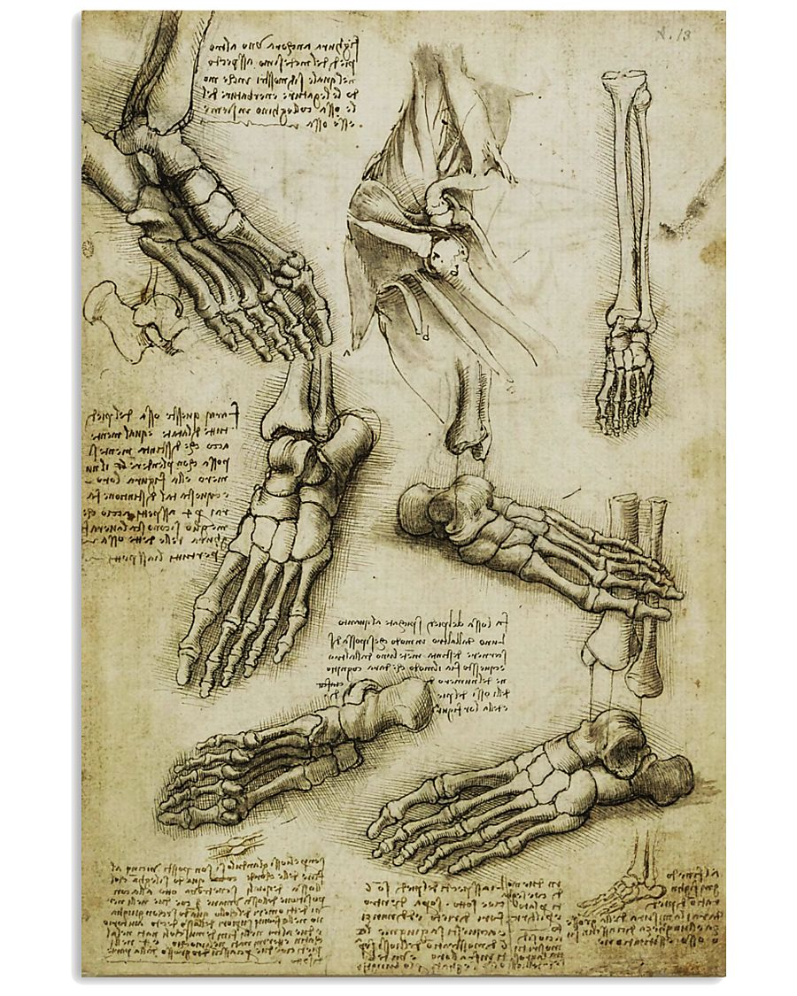 davinci-podiatry-foot 11x17 Poster