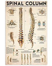 Spinal Column  24x36 Poster front
