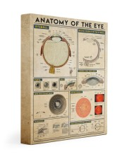 eye-anatomy 11x14 Gallery Wrapped Canvas Prints thumbnail