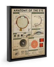 eye-anatomy 11x14 Black Floating Framed Canvas Prints front