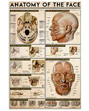 anatomy-face 11x17 Poster front