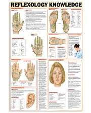 reflexology knowledge 24x36 Poster front