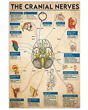 the cranial nerve  11x17 Poster front