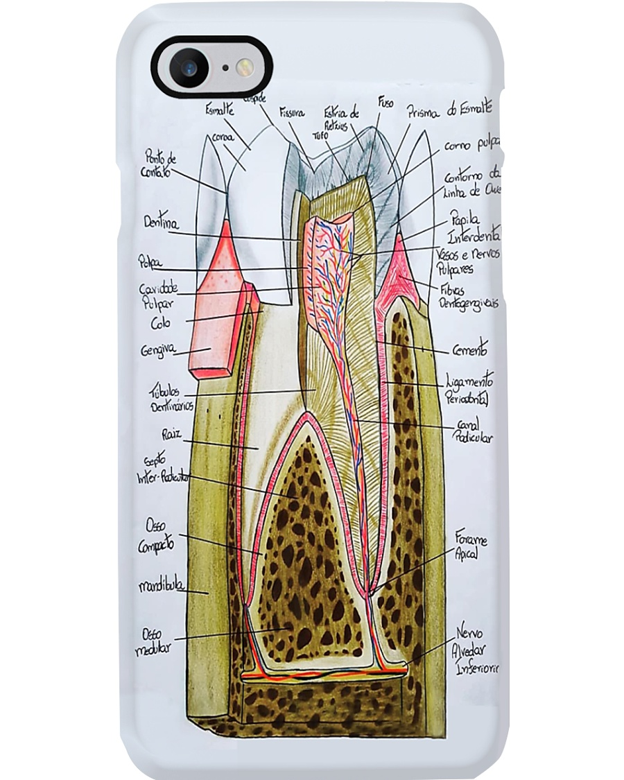 tooth anatomy case Phone Case