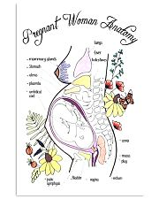 Pregnant anatomy 24x36 Poster front
