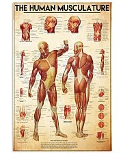 the human musculature 24x36 Poster front