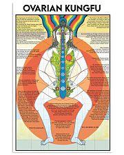 Tao ovari kungf dvhd-NTH 24x36 Poster front
