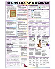 ayurveda knowledge 24x36 Poster front
