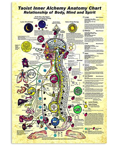 taoist anatomy