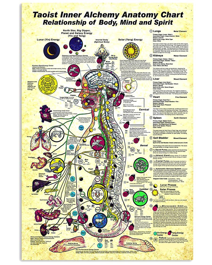 taoist anatomy 24x36 Poster