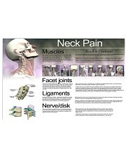 neck pain  24x16 Poster front