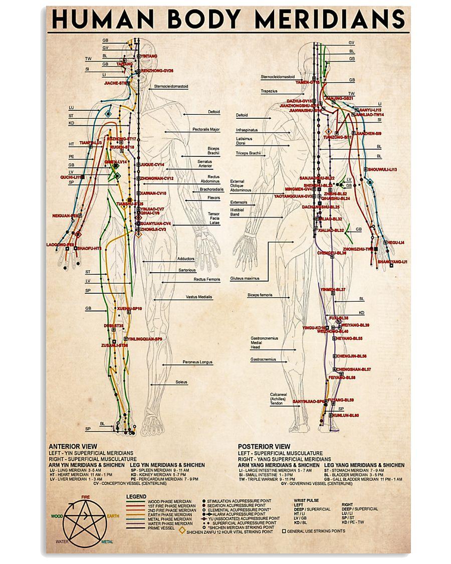 human meridians 24x36 Poster