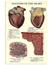 heart anatomy vintage 11x17 Poster front