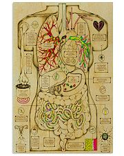 anatomy fact 2 11x17 Poster front