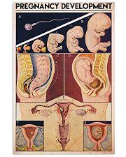 preg dev midwife 11x17 Poster front