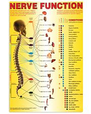 spinal nerves function chart 24x36 Poster front