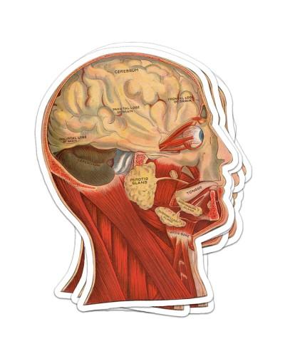 Sticker Head antm 2