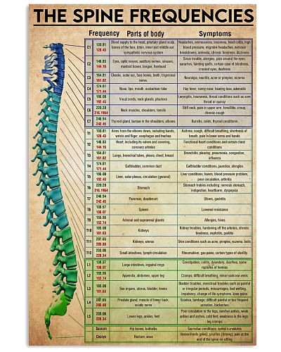 spinal chart