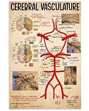 cerebral vasculature 11x17 Poster front