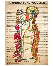 autonomic nerves 11x17 Poster front