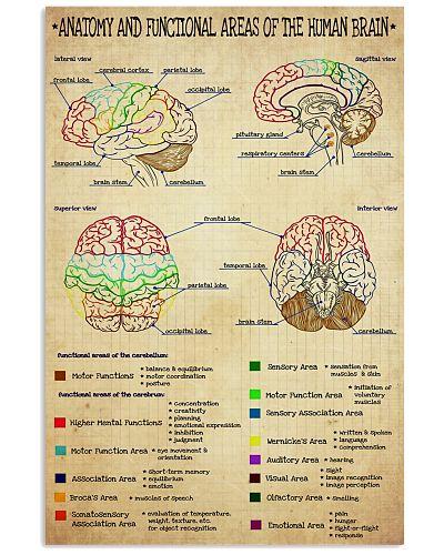 neuro brain anatomy