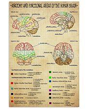 neuro brain anatomy  11x17 Poster front