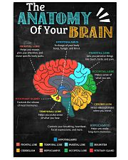 anatomy brain board 11x17 Poster front