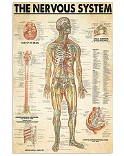 neurologist the nervous system 24x36 Poster front