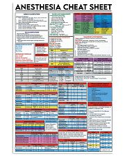 Anesthesia cheat sheet 24x36 Poster front