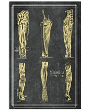 anatomy black board 3 11x17 Poster front