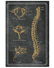 anatomy black board 7 11x17 Poster front