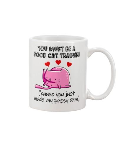 A  Good Cat Trainer