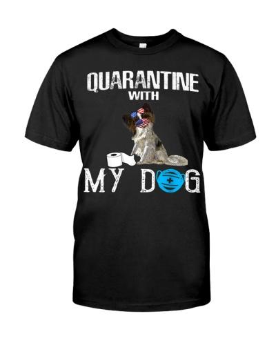 Papillon Dog Quarantine With My Dog