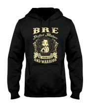PRINCESS AND WARRIOR - BRE Hooded Sweatshirt tile
