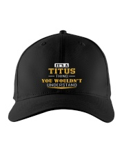 TITUS - THING YOU WOULDNT UNDERSTAND Embroidered Hat front